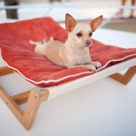 furniture-for-pets-6