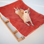 furniture-for-pets-7