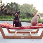 furniture-for-pets-8